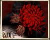 ML Dragon Flower
