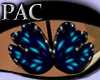 *PAC* Butterfly Dream Bl