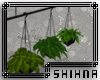 [S] BG Oia Hanging Plant