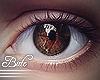 B! Eyes - Cocoa. Male