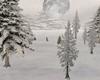 Snowy-Woods-ROOM