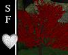 SF~ Romantic Tree Red