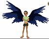 blue black quad wings
