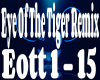 Eye Of The Tiger Remix