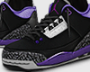 "Jordan 3 ""Court purple"""