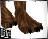Lion Paws Feet