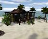 Tropical Beach Home