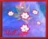 RoseWhite Water Flowers