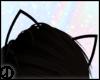 糞| wire cat ear (m)
