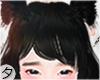 💕Xia Mei Bangs+