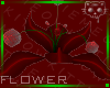 Flower Red 2a Ⓚ