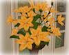 [Luv] Lillys Vase