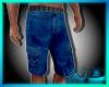 (W) Cargo Shorts Blue