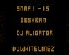 [DJW] DJ Aligator
