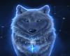 Wolfmoon WOLF