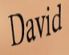 tatoo David