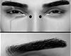Z Eye Brows NATU
