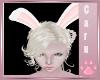 *C* Der Animated Bunny