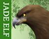 [JE] Eagle Brown