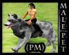 PM) Action Wolf Pet male