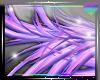 Furry Wing~ R