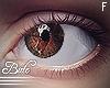 B! Female - Cocoa. R