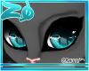 Tibby | Eyes >