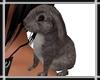 Bunny on Shoulder v2