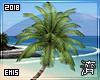 !E! Tropic Palm Trees II