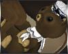 +Bear+ Sailor