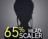 Head Scaler 65%