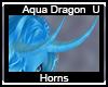 Aqua Dragn Horns