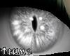 ~Tsu Seraph Turbo Eyes