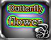 butterfly flower hip+sho