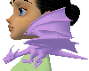 (e) lilac shoulder drake