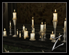 Z | WT  Candles