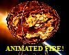 LION FIRE BALLOON-ANIMA