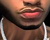 AW | Asteri Full Beard