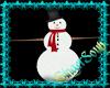 Snowman & Friends Poses