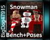 [BD]SnowmanBench+Poses