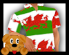 !A! Welsh Shirt