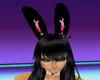 s~n~dani piglet ears 2
