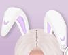 🇾 Bunny Moon Lilac