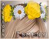 [Is] Yellow Rose Headban