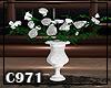 [C971] White Roses