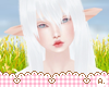 Ⓐ Albino No Lash Dawn