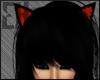 EH | Halloween Cat Ears