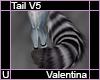 valentina Tail V5