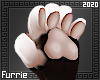 f| Paws