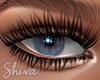$ Shiva EL Beauty
